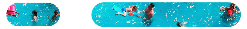 rounded slice swimming.png