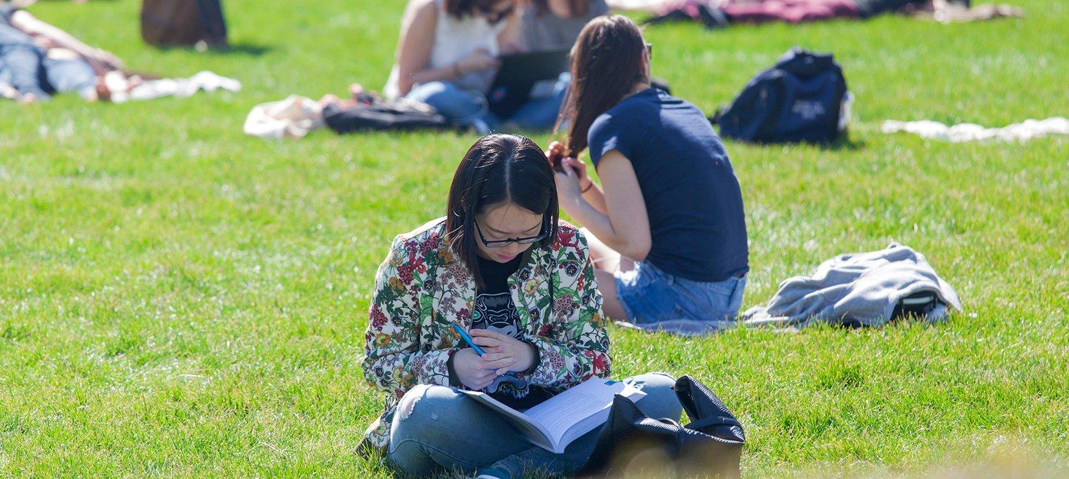 studying-in-park.jpg