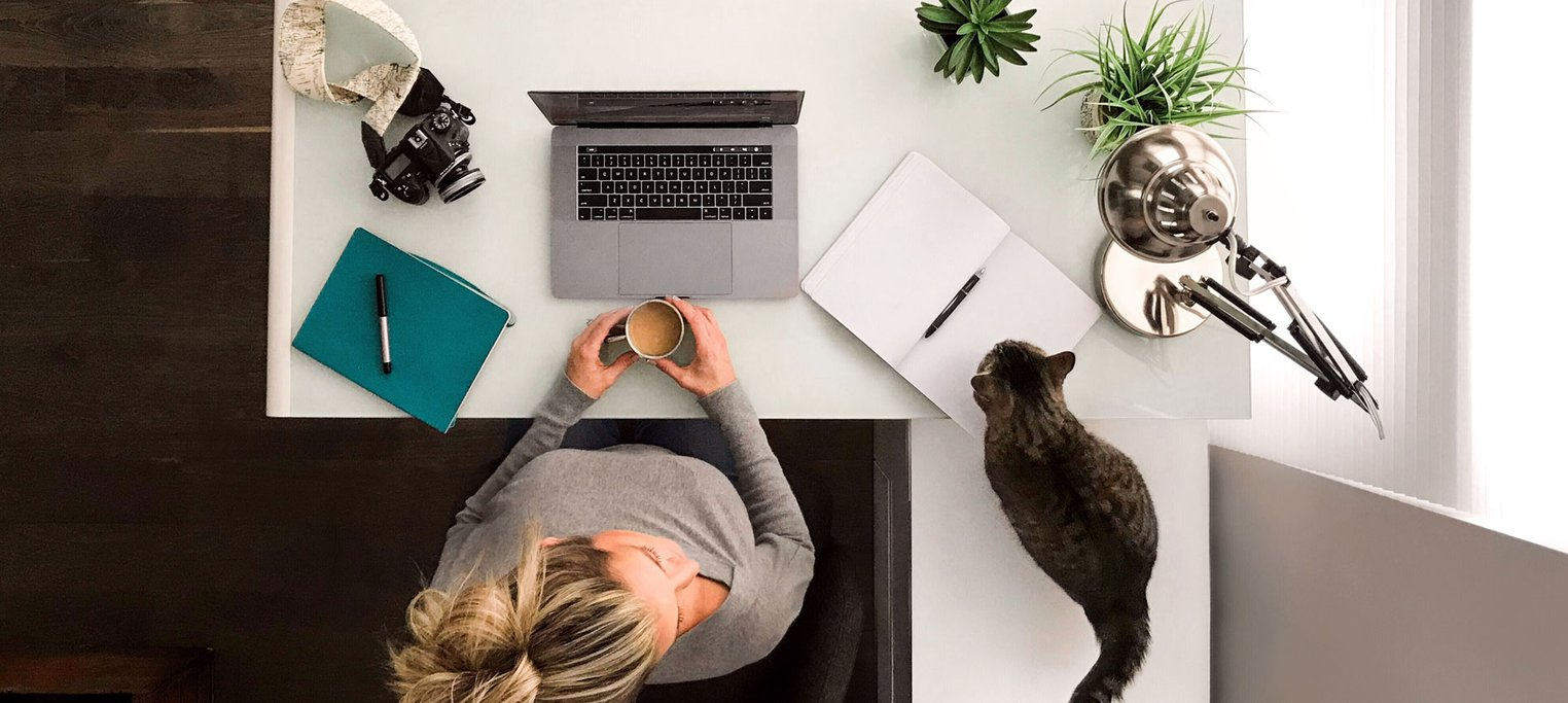 Woman working from home with cats
